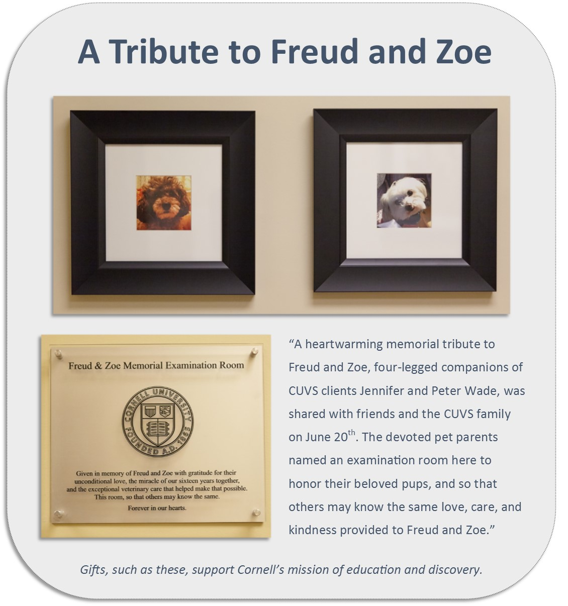 A tribute to Freud and Zoe