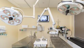 Dentistry & Oral Surgery Operatory